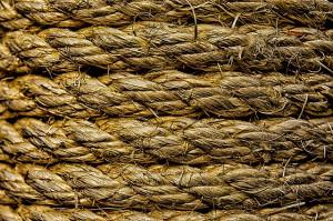 Sisalteppich kaufen - Sisal Teppich Test